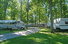 Campsites at Red Run Campground